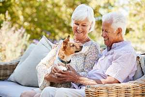 Happy retired couple with dog