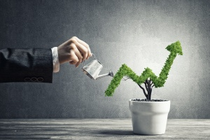 growing your wealth after knowing How To Choose A Wealth Management Firm