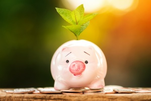 piggy bank that is getting money from Retirement Income Planning